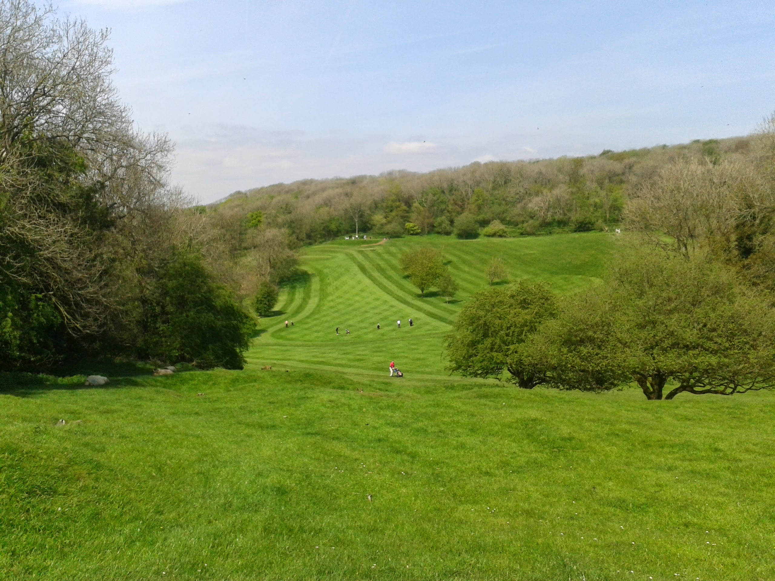 Dinas Powis Golf Field